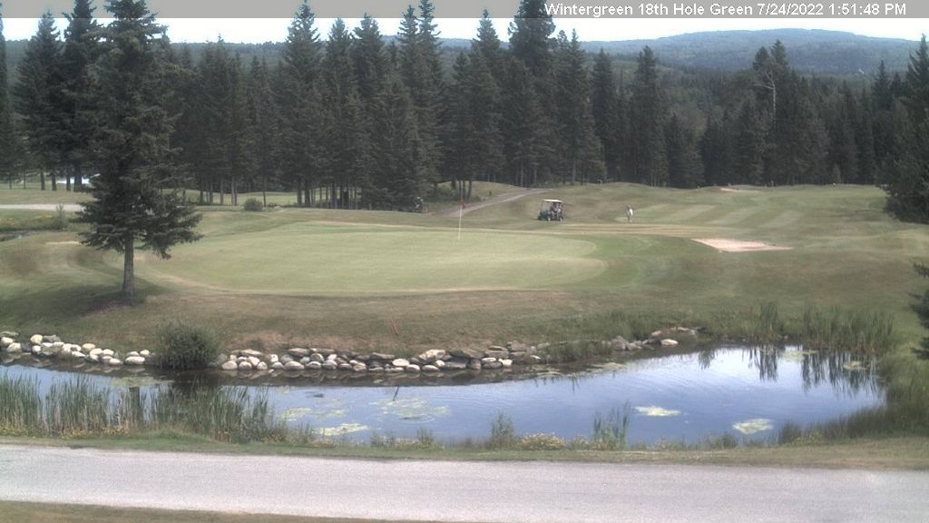 Wintergreen Webcam